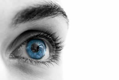 De l'importance de la vision